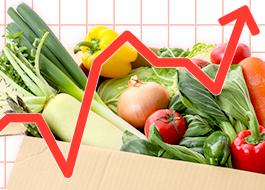 卸売価格動向